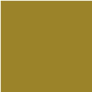 field trips icon