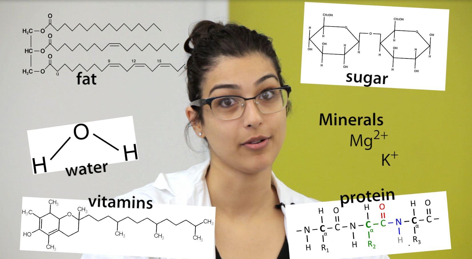 thumbnail-nutrients