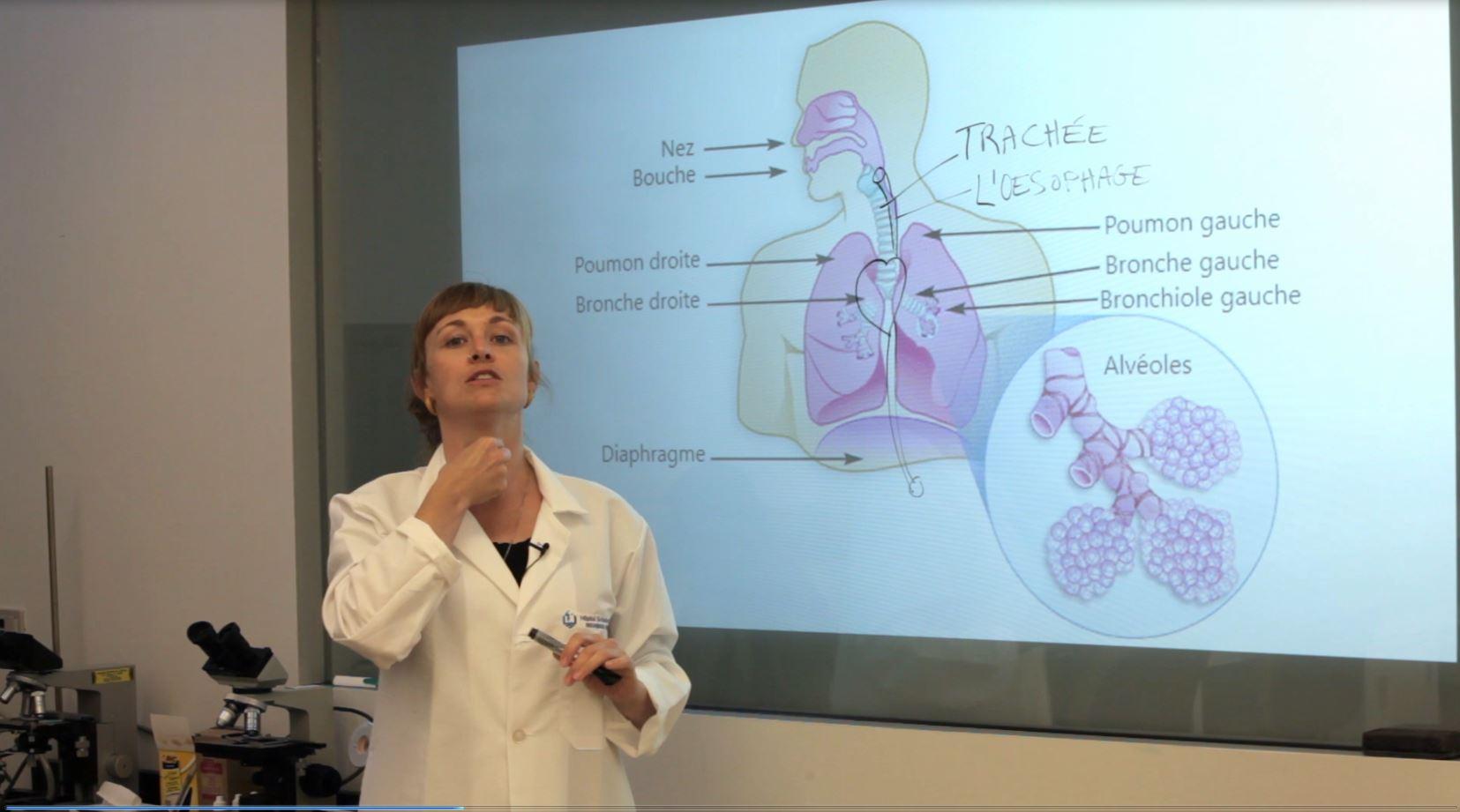 thumbnail-lungs-fr